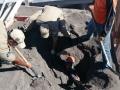 Trabalhador sobrevive após cair numa máquina de asfalto em MT