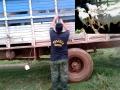 Polícia recupera cabeças de gado roubado na zona rural de Jangada