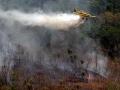 Campanha de prevenção e combate às queimadas inicia em maio em MT