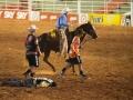 Cowboy mato-grossenses sofrem fraturas em Festa de Peão de Barretos; um sofreu TCE