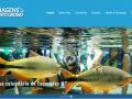 Novo site da Roma Turismo entra em operação em Mato Grosso