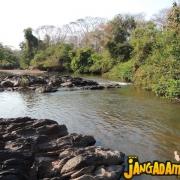 Ação Salve o Rio Jangada 2015